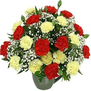 Red and yello wmini carnations