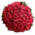 100 silky red roses