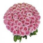 50 long stem pink roses bouqet