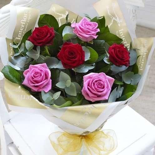 6 mixed roses