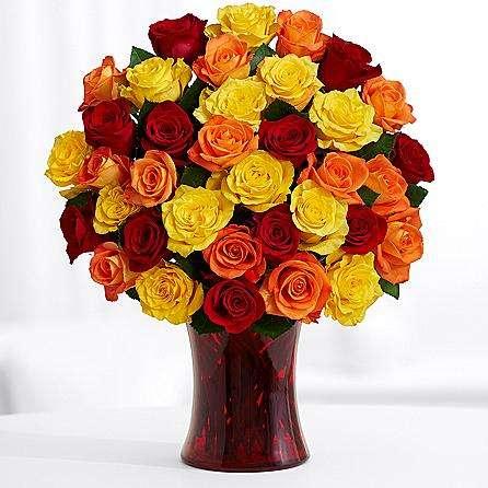 36 Autumn roses