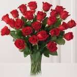 2 dozen red roses bouquet